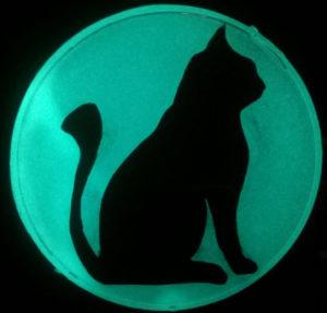 Deko mit Katzenmotiv aus blaugrünem lumentics-Leuchtpulver